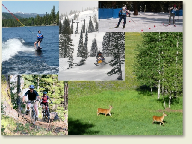 why you buy in McCall